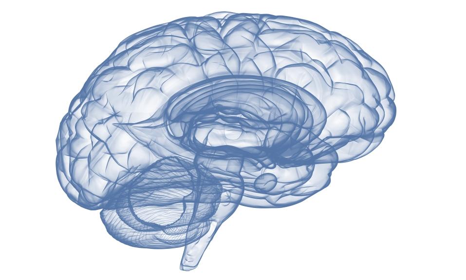 brain-trauma-1