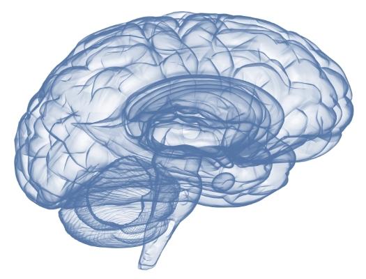 brain-trauma-2